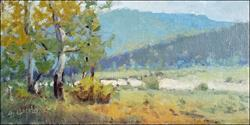 Plein Air Rockies 2016